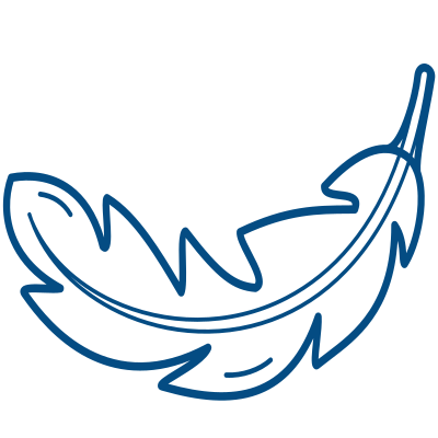 balise argos bird, technologie miniature, Syrlinks Wildife